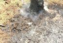 Pożar ściółki leśnej w Gorcach