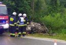 Nie żyje 17-letni kierowca, uczestnik wczorajszego wypadku w Sieniawie