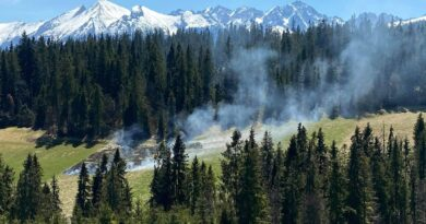 Pożar traw pod Tatrami